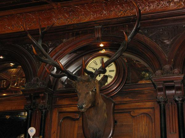 The Stag Heads