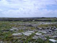The Aran Islands have the same Burren landscape.