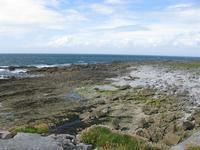 Where the Burren meets the sea north of Doolin.