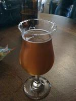 Pliny the Younger at City Beer